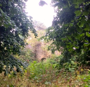 The ruins in the woods taken last week.