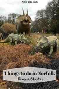 Things to do in Norfolk- dino