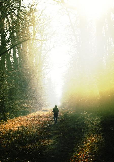 imark-in-the-woods-3